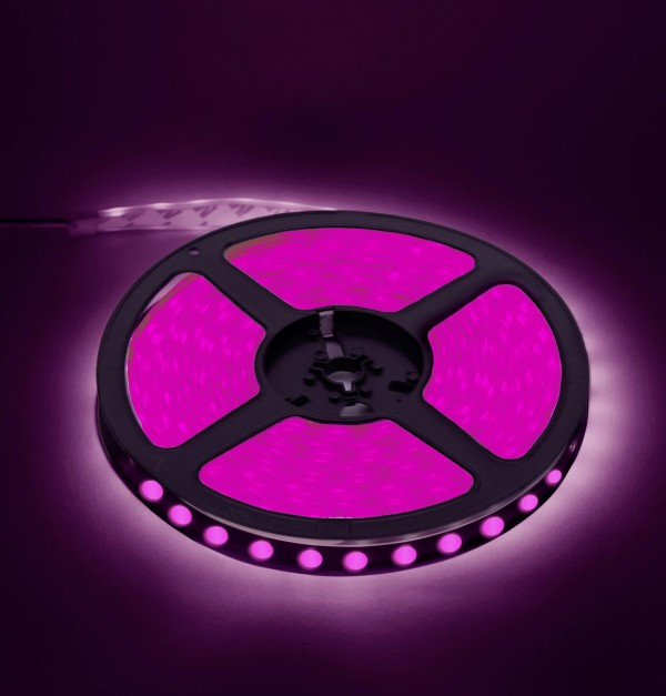 BOMAX-LED TRAKA SMD5050 14.4w/m 60led/mIP65 LJUB 630901008
