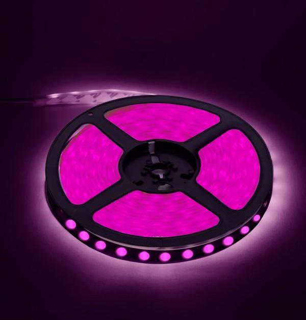 BOMAX-LED TRAKA SMD5050 14.4w/m 60led/m IP20 PINK-630900007